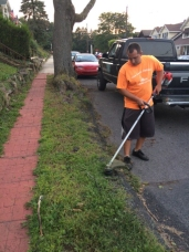 Lawn Care: Trimming