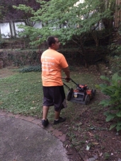 Lawn Care: Mowing